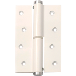 Single Action Blister Spring Hinge 120